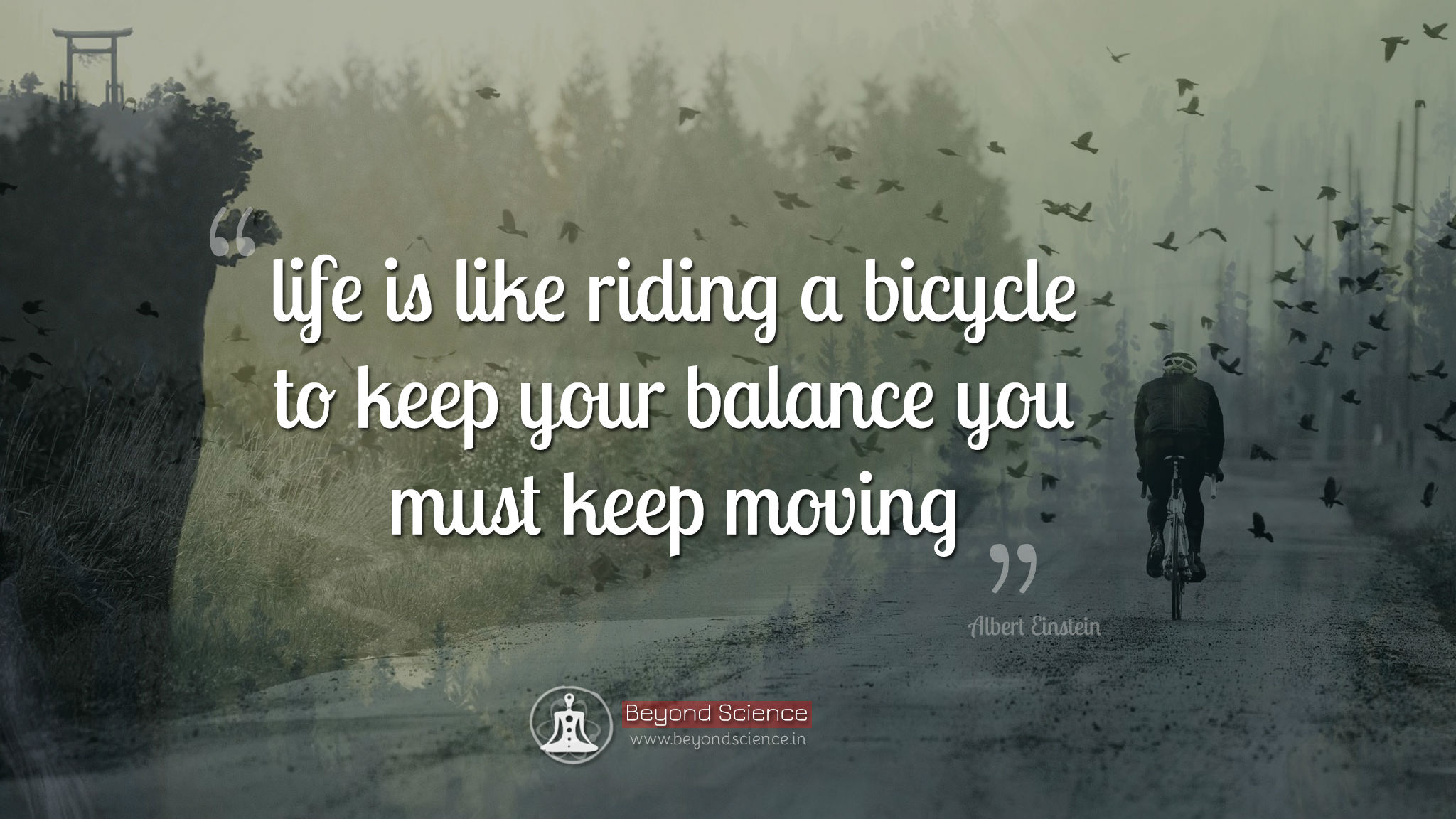 Life Quotes: Life Is Like Riding A Bicycle To Keep Your